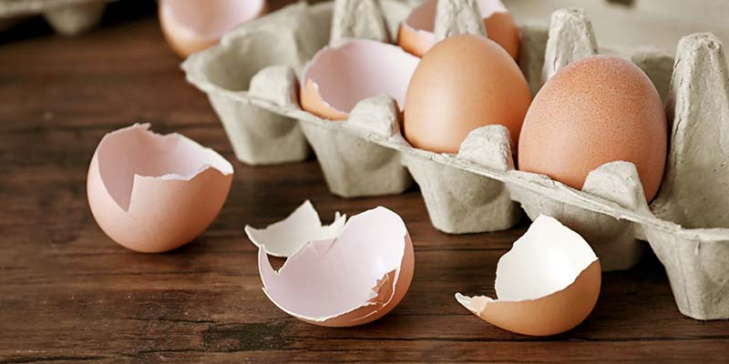 Why You Should Never Put Eggshells Down Your Garbage Disposal
