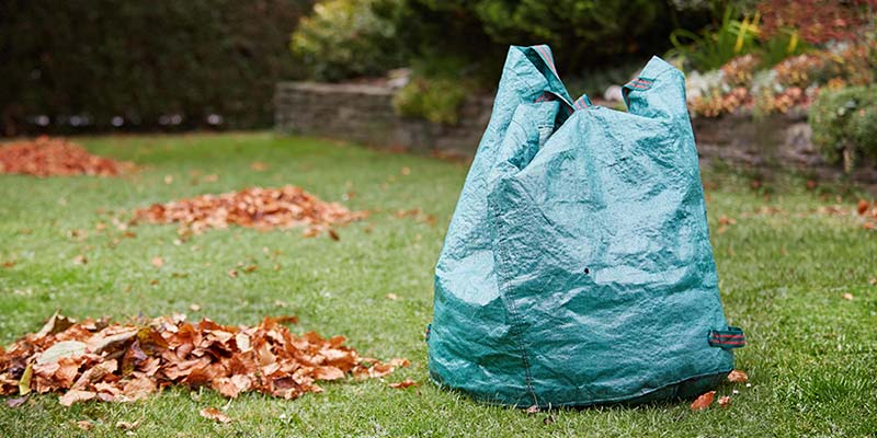 Bag of Leaves in Yard